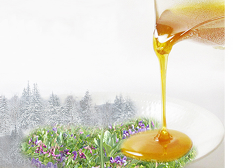 タイガの森の純粋蜂蜜